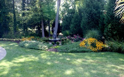 Perennials vs. Annuals – How Do You Know What to Plant?